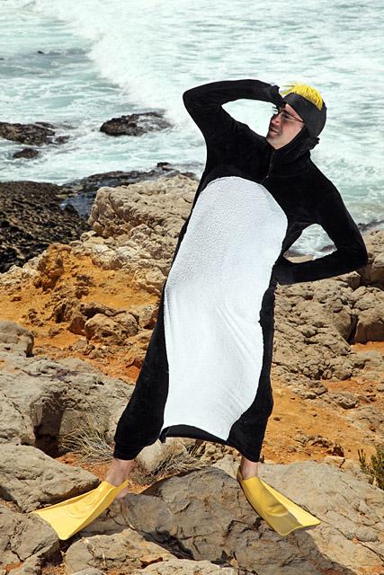 Pinguim 003 PML